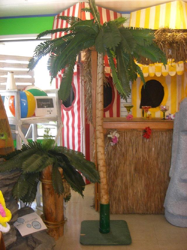 Theme Tiki Palm Tree Rentals Mentor Oh Where To Rent Theme Tiki Palm Tree In Cleveland Chardon