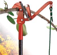 Where to find TREE TRIMMER EXTENDABLE in Mentor