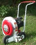 Rental store for LAWN LEAF BLOWER 5HP WALKBEHIN in Mentor OH