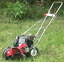 Where to find LAWN EDGER in Mentor